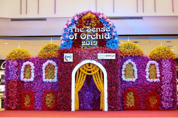 """ศูนย์การค้าเซ็นทรัลพลาซาศาลายา ขอเชิญร่วมงาน """"The Sense Of Orchid 2019 """""""