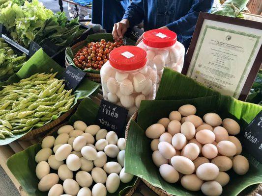 สายคลีน สายสุขภาพ ยังมีที่พึ่ง สวนสามพราน เปิดบริการ Organic Express ทั้ง Drive Thru และ Delivery เริ่มแล้ววันนี้ !!!